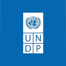 UNDP Youth Co:lab
