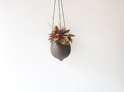 Scorched Hanging Planter