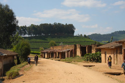 A village on the road from Gisenyi to Kibuye