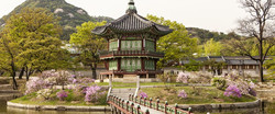 guney_kore_japonya_turu_seul_tokyo_kyoto_osaka_214_1805_0001_L