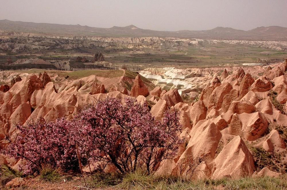 RedValley-in spring_kızılçıkur_vadisi_cappadcoia_tours_cappadocia_hiking_trekking_tour_daily_tours_t