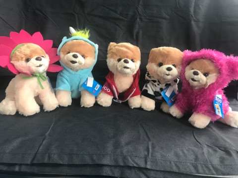 BOO! The Worlds Cutest Dog Plush Toy Collection
