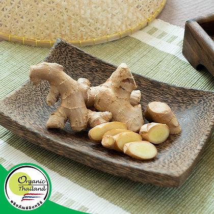 ขิงแก่ Organic (200 กรัม/แพ็ค)