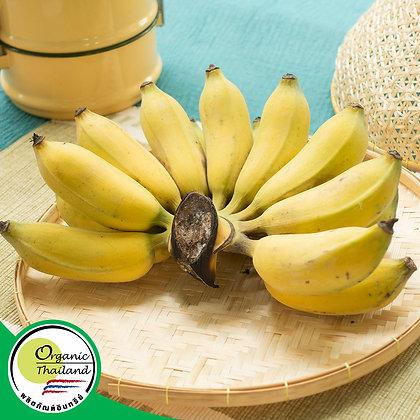 กล้วยน้ำว้า Organic (1 กิโลกรัม/แพ็ค)