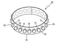 HCLO tablet ring.png
