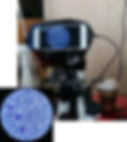 Обработка данных микроскопии.jpeg