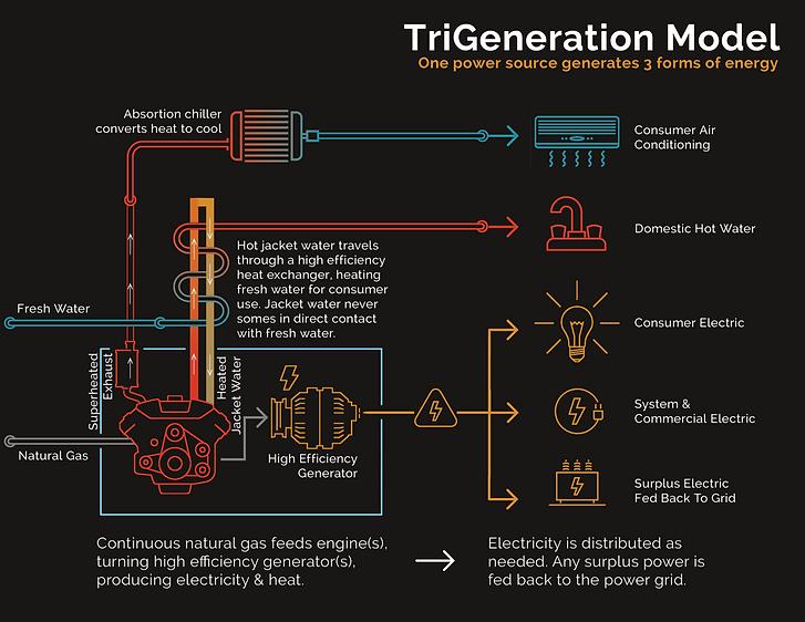 CoGen TriGen Model.png