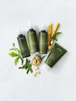 Aveda Skin Products