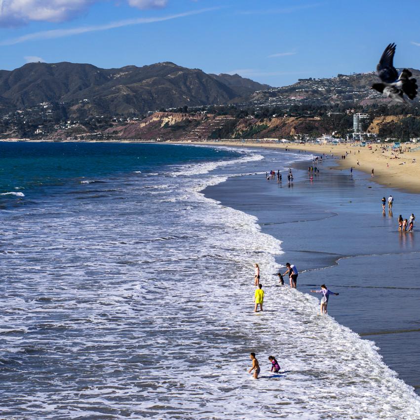 Lauren Hedges Photography Santa Monica Beach