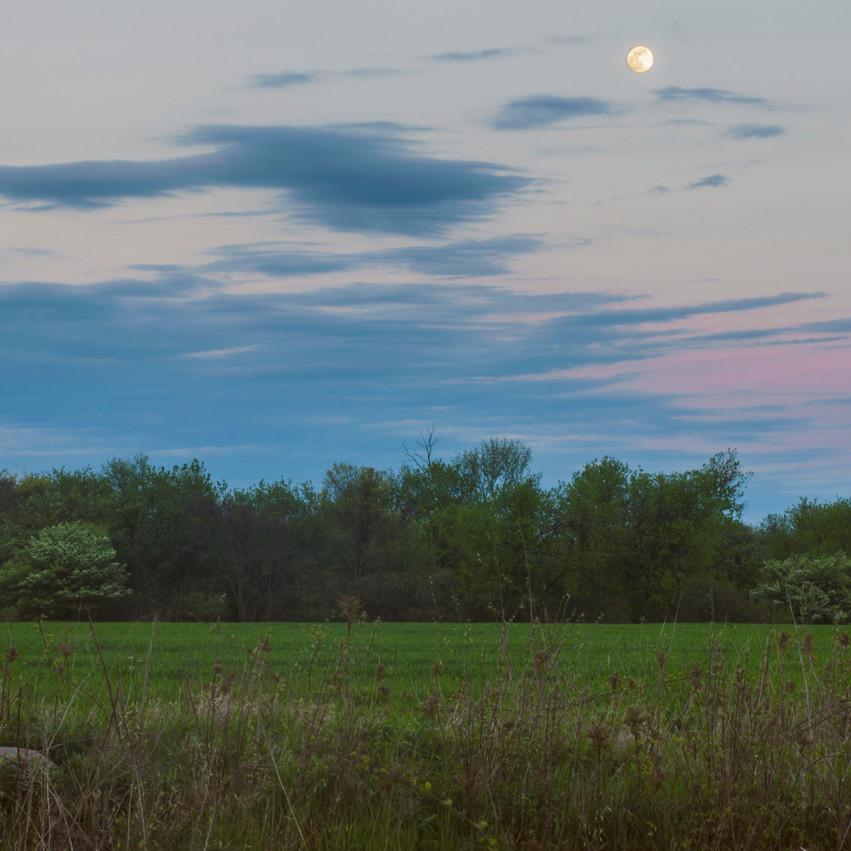 Lauren Hedges Photography Essex County Moon Over Field