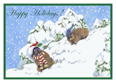 Marmots in Snow Cards