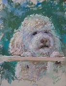 Gretchen Acharya pet portrait-Luna at th