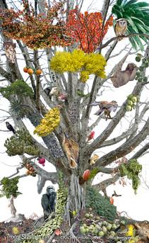 trees-sustain-life.jpg