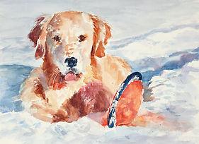 Nancy Sullo Portrait of Kai.jpg
