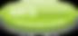 BCAA-CALENDAR-BUTTON-300x140.png