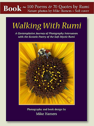 """Walking With Rumi"" Book"
