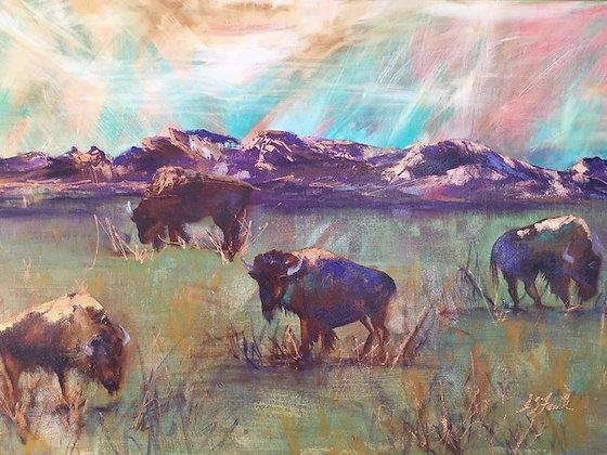 """Buffaloes Grazing"" print"