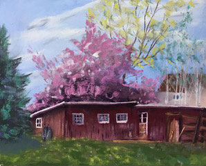 Shed in Pink