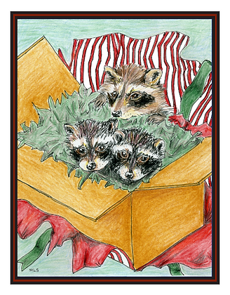 Raccoons in a Box Cards