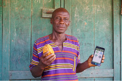 Male Farmer in Sierra Leone