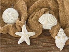 Shells Shower Curtain Hooks - Set of 12 #992-65