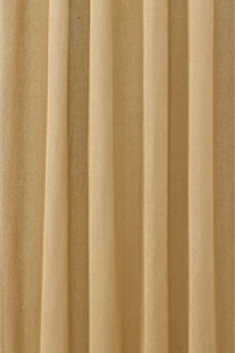 Ginger Spice Shower Curtain #424-45