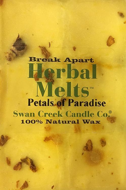 Petals of Paradise #02281
