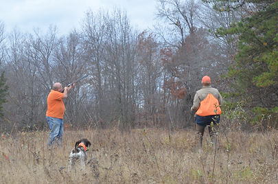 Nutmeg German Shorthaired Pointer Club, CT, Field Trial, Dog, Horse, Bird, On Point