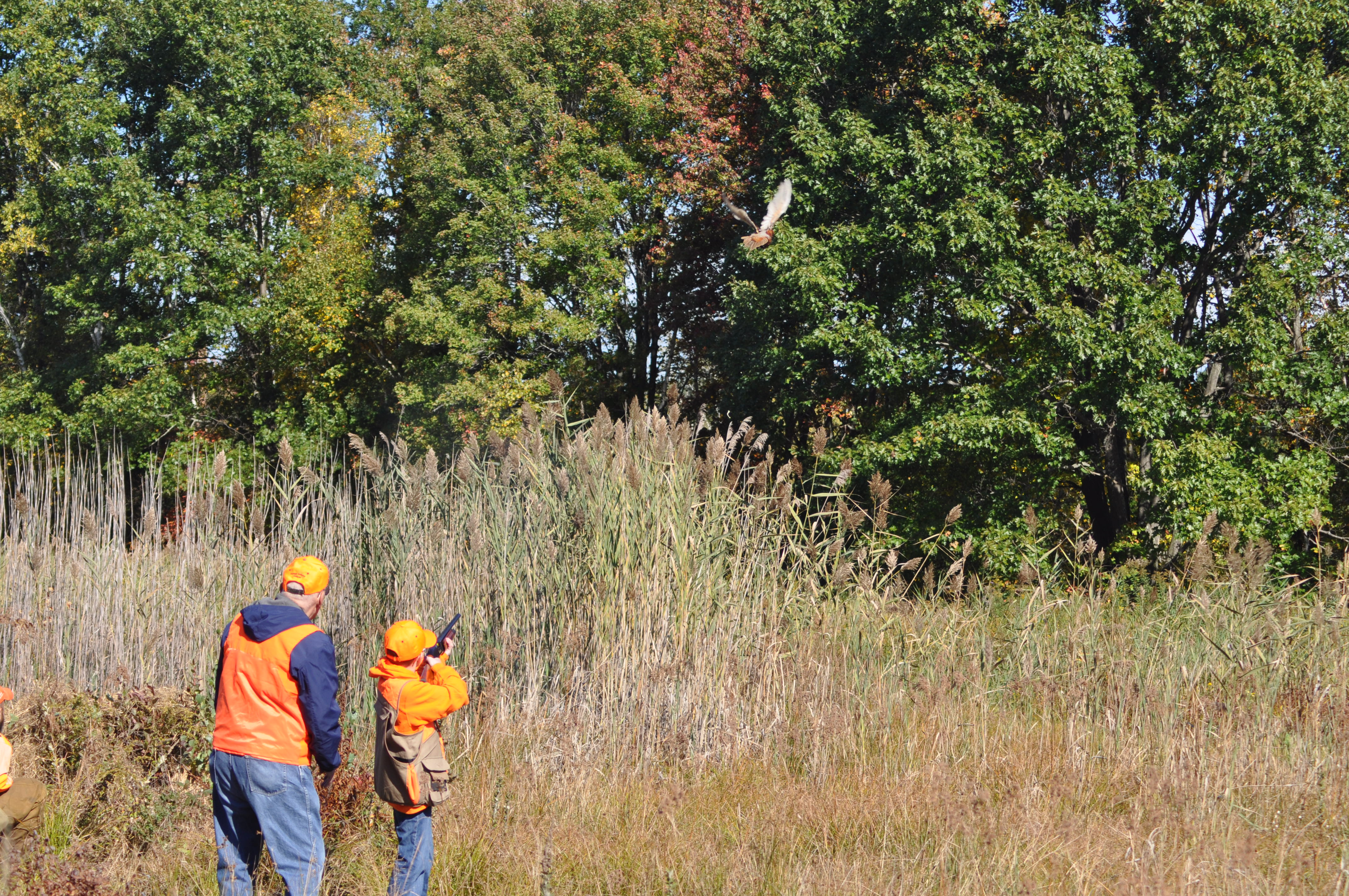 Youth Hunt Day Oct 2015