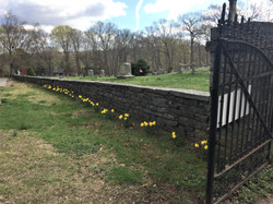 IMG_2147 Cemetery Bob W 2019