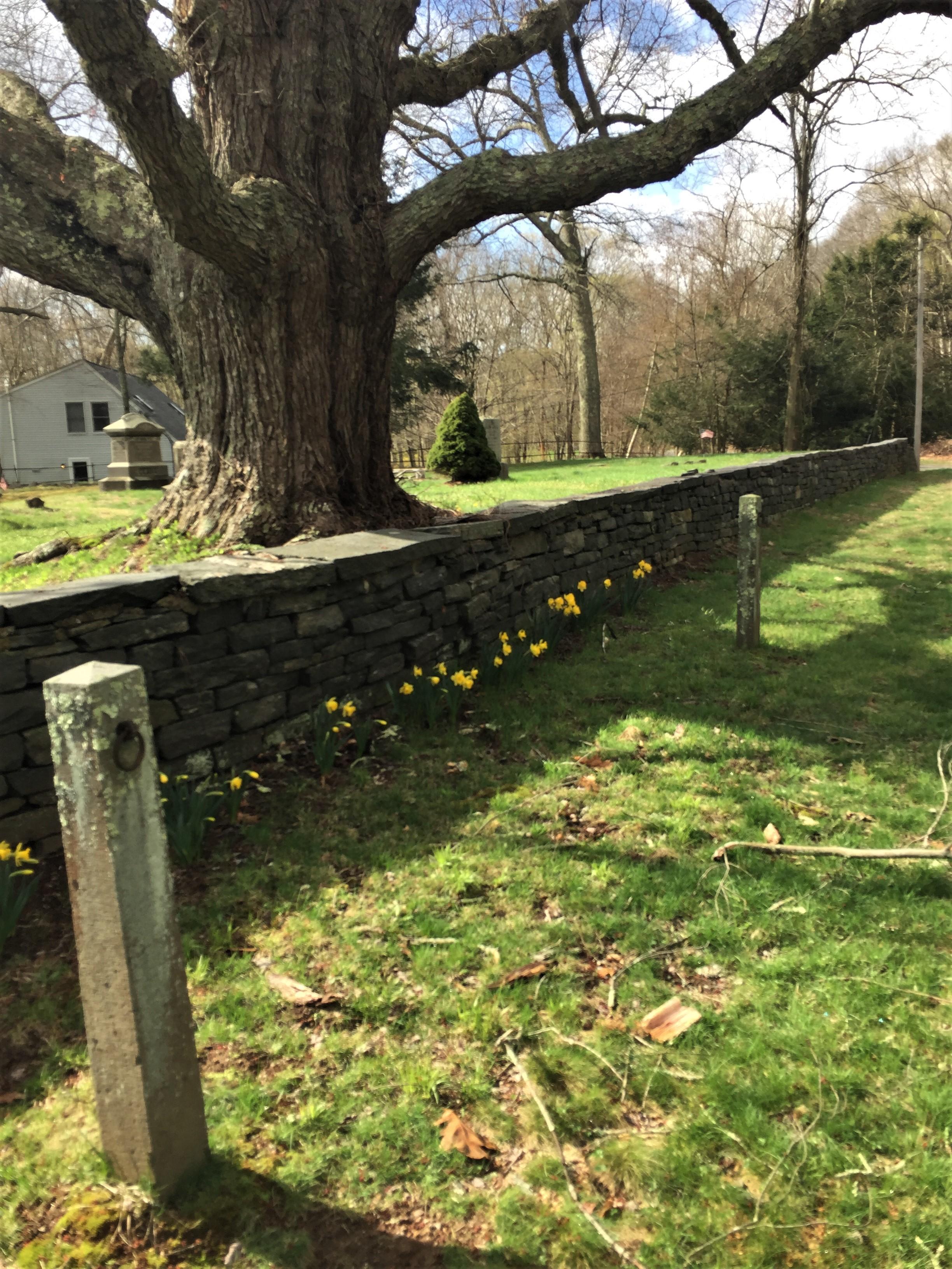 IMG_2146 Cemetery Bob W 2019