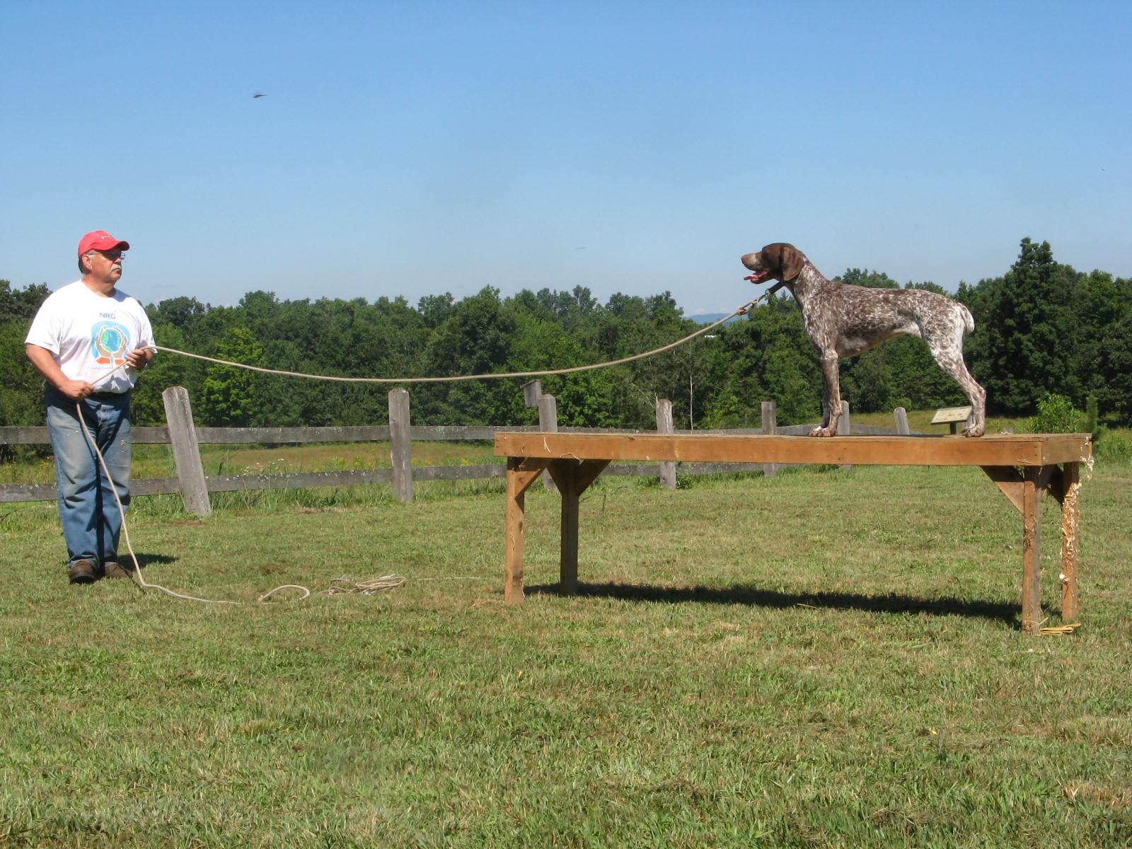FFD Tom, Jinx on Training Table IMG_7954