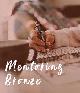 Mentoring BRONZE Package