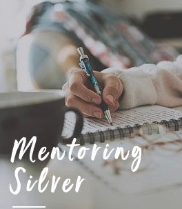 Mentoring SILVER Package