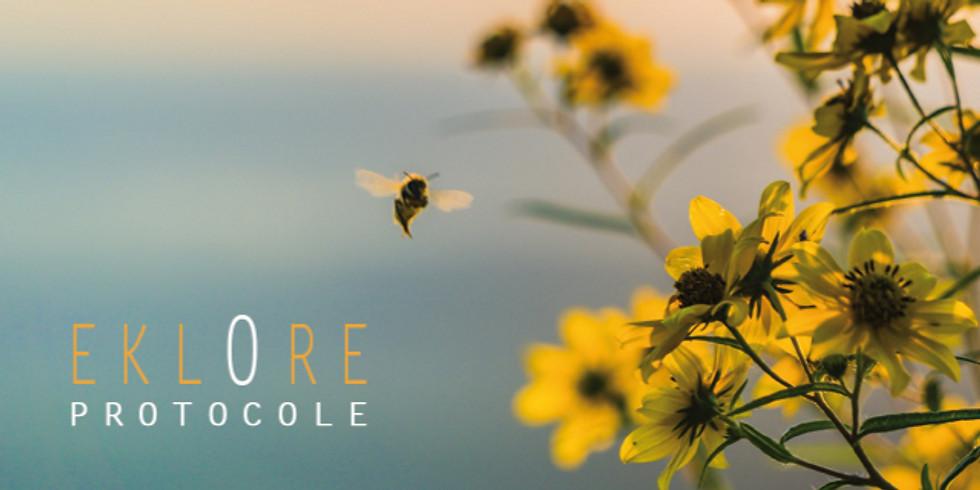 "Protocole EKLORE - Collectif - Groupe ""Ressource"""