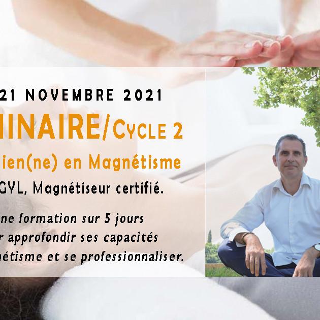 Cycle 2 / Séminaire Praticien en Magnétisme / Novembre 2021