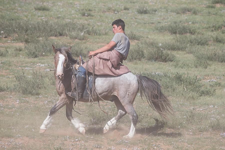 Breaking a Horse