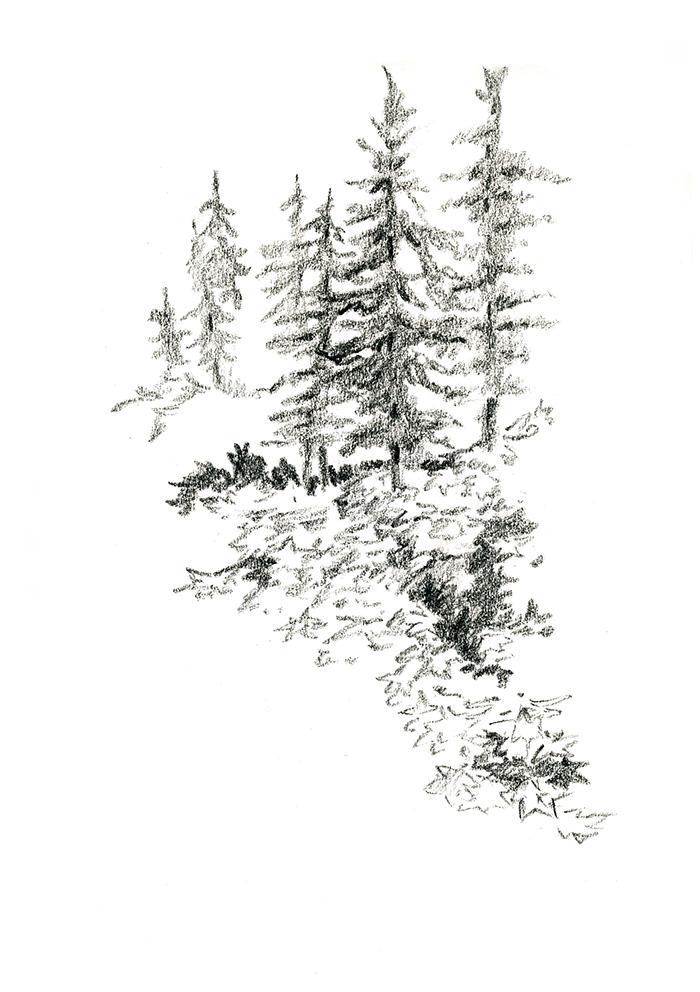 ISLE ROYALE LANDSCAPE
