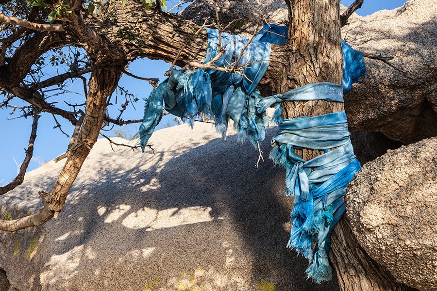 Khadag tree