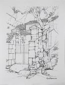 #1091 - L'arbre les piliers