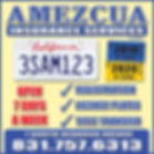Amezcua Insurance - 4x4 2019-1.jpg