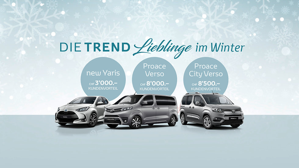 Fokuswindow_Trend_Winter-Aktion_Liebling