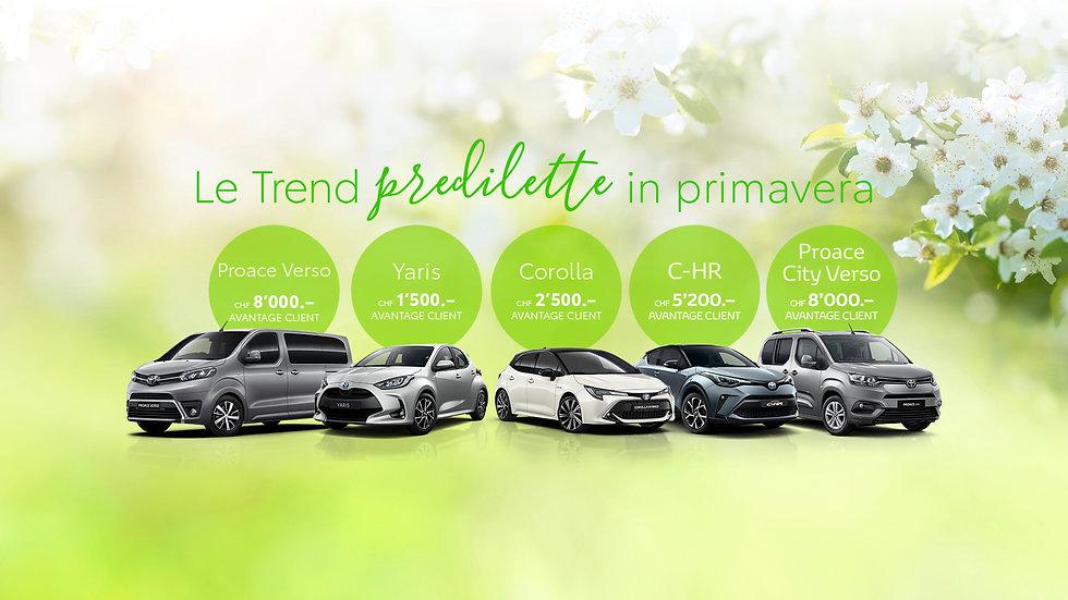 Trend_Fruehling_I.jpg