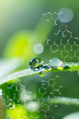 Plants background with biochemistry stru