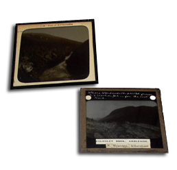 Medium format - up to 500 transparencies