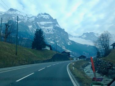 The Flexcats | Schweiz
