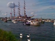 The Flexcats | Sail-Amsterdam