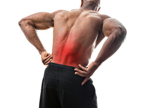 EVERYONE in Sarasota, FL Needs Regular Chiropractic Adjustments