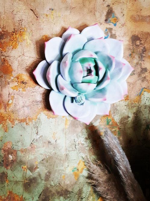 Decorative Violet Wall Succulent