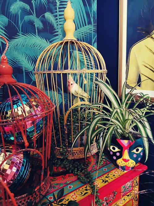 Yellow Bird Cage